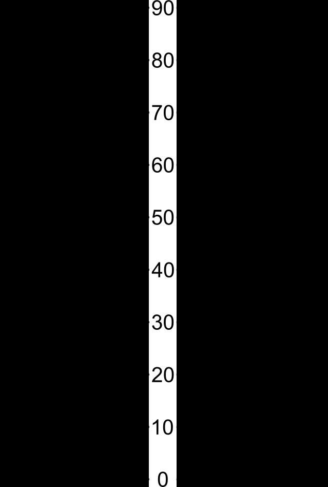 Σύγκριση διαστάσεων σε ίντσες, χιλιοστά και ίντσες British standard pipes